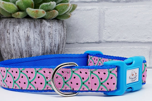 Watermelon Dog Collars & Leads