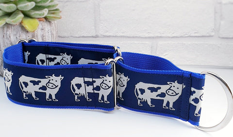 "Cows 2"" Wide Collars"