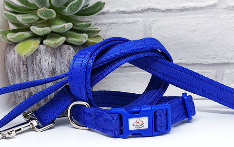 Royal Blue Plain Webbing Collars & Leads