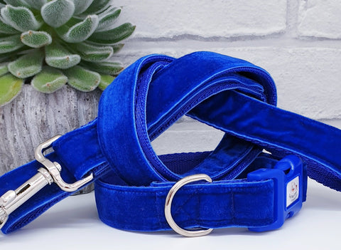 Blue Velvet Dog Collars & Leads