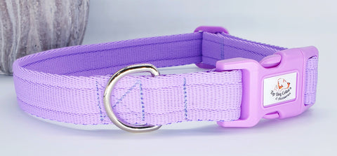 Lilac Plain Webbing Collars & Leads