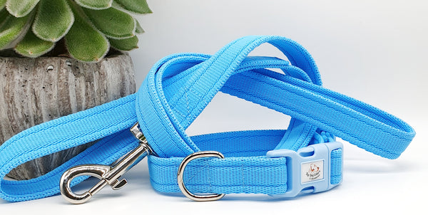 Sky Blue Plain Webbing Collars & Leads