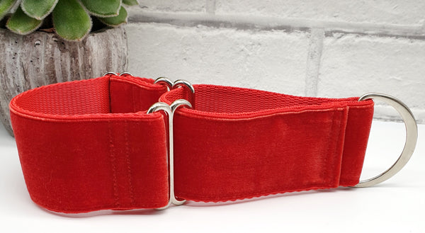 "Red Velvet 2"" Wide Collars"