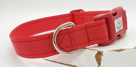 Red Plain Webbing Collars & Leads