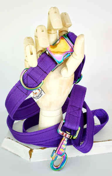 Purple Plain Webbing Collars & Leads