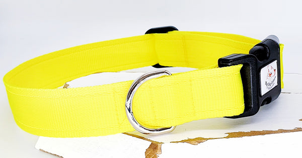 Day Glo Yellow Plain Webbing Collars & Leads