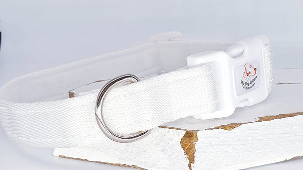 White Plain Webbing Collars & Leads