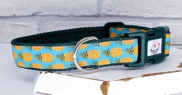 Pina Colada Dog Collars & Leads