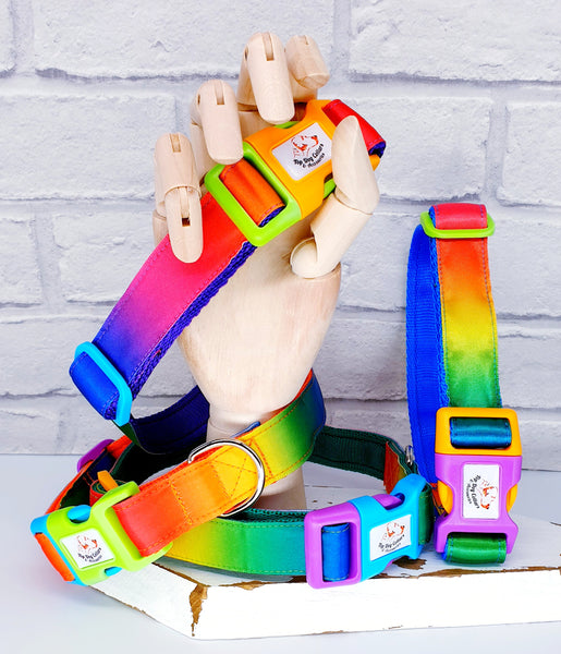 Satin Rainbow dog collars  & Leads