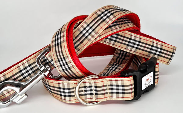 Burberry ribbon Dog Collars & Leads