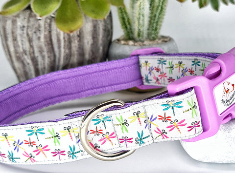 Dragonflies Dog Collars & Leads