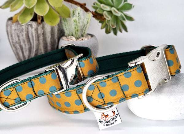 Mustard Madness Collars & Leads
