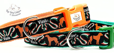 Vizsla Themed Collars & Leads
