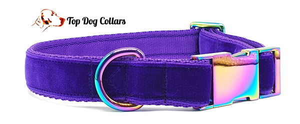 Purple Velvet Collars & Leads
