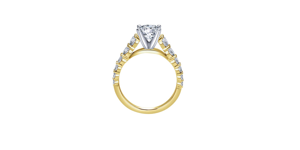 Taylor 14k Yellow Gold Round Straight Engagement Ring