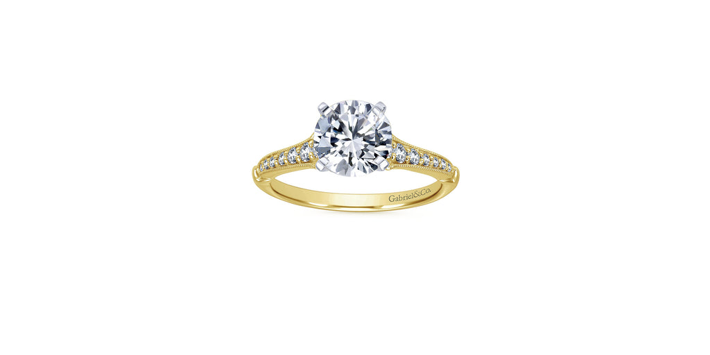 Hollis 14k Yellow Gold Round Straight Engagement Ring