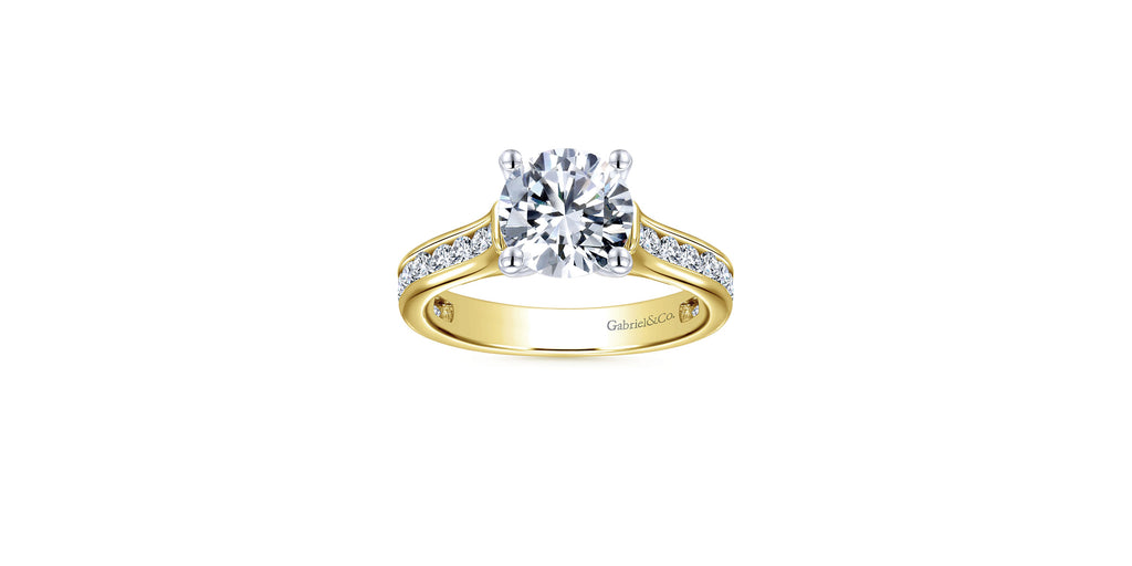Jayden 14k Yellow Gold Round Straight Engagement Ring