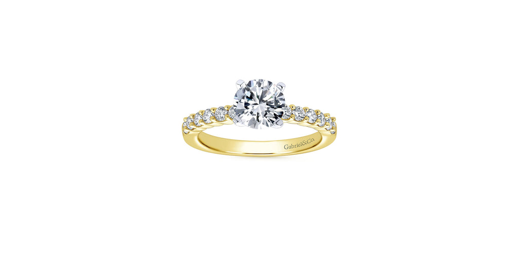 Caleigh 14k Yellow Gold Round Straight Engagement Ring