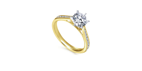 Danielle 14k Yellow Gold Round Straight Engagement Ring