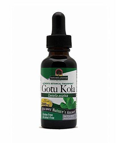 Nature's Answer Alcohol-Free Gotu Kola Herb, 1-Fluid Ounce - Vitamins Emporium
