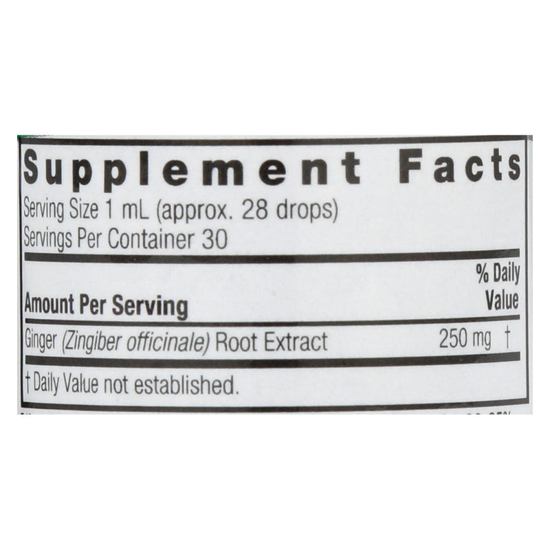 Nature's Answer Ginger Root Extract - 1 fl oz