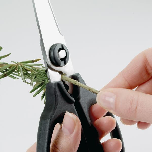 Kitchen and Herb Scissors
