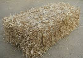 Oaten Hay- available by pre arrangement only. Not ...