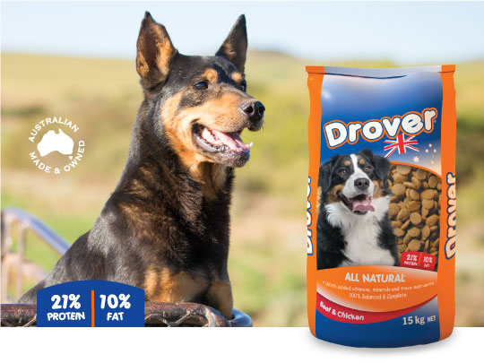 Coprice Drover Dog Food  (20kg)