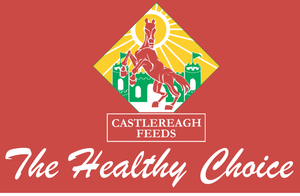CASTLEREAGH MOLASSES STEAM ROLLED BARLEY 25KG