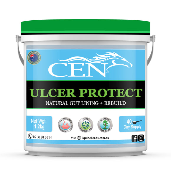 CEN Ulcer Protect - various sizes