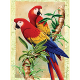 Junior Paint By Number Bamboo & Parrots