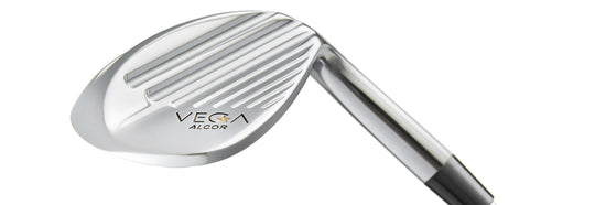 VEGA Alcor Wedge