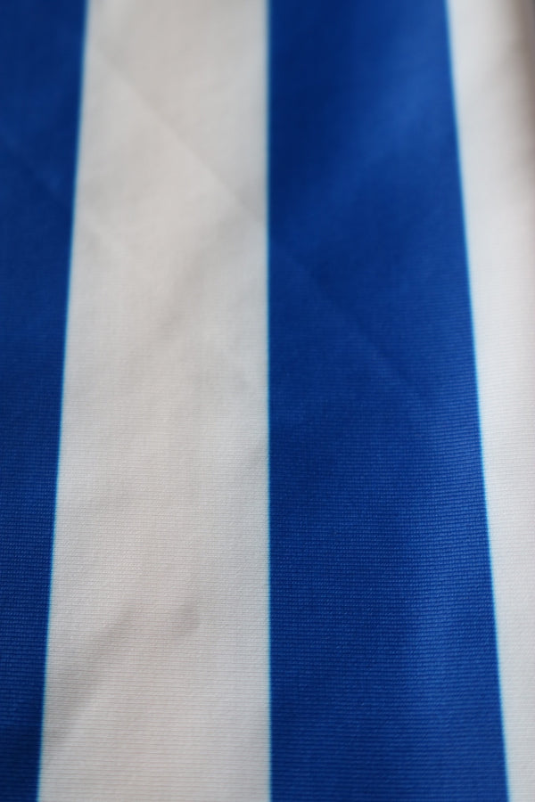 Royal/White Vertical Stripe Nylon Spandex- Seconds