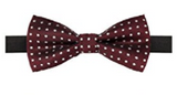 AUSKY Elegant Adjustable Pre-tied bow ties for Men Boys. - Socksn'Ties