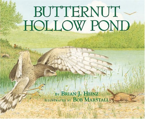 Butternut Hollow Pond (Millbrook Picture Books)