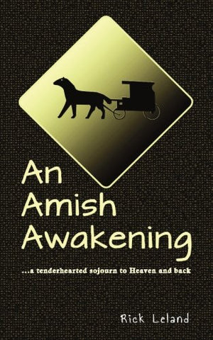 An Amish Awakening: a tenderhearted sojourn to Heaven and back