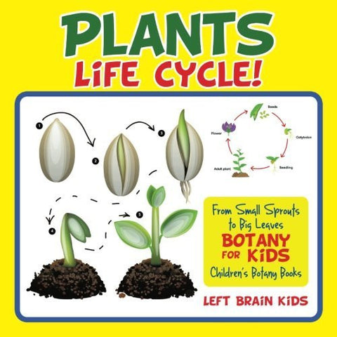 A Plant's Life Cycle! From Small Sprouts to Big Leaves - Botany for Kids - Children's Botany Books