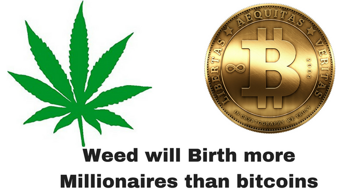 Cannabis Industry will birth more Millionaires than bitcoin