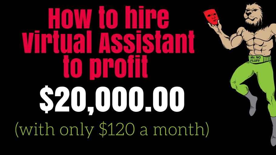 How to hire Virtual Assistant to profit $20,000.00 with only $120 a month