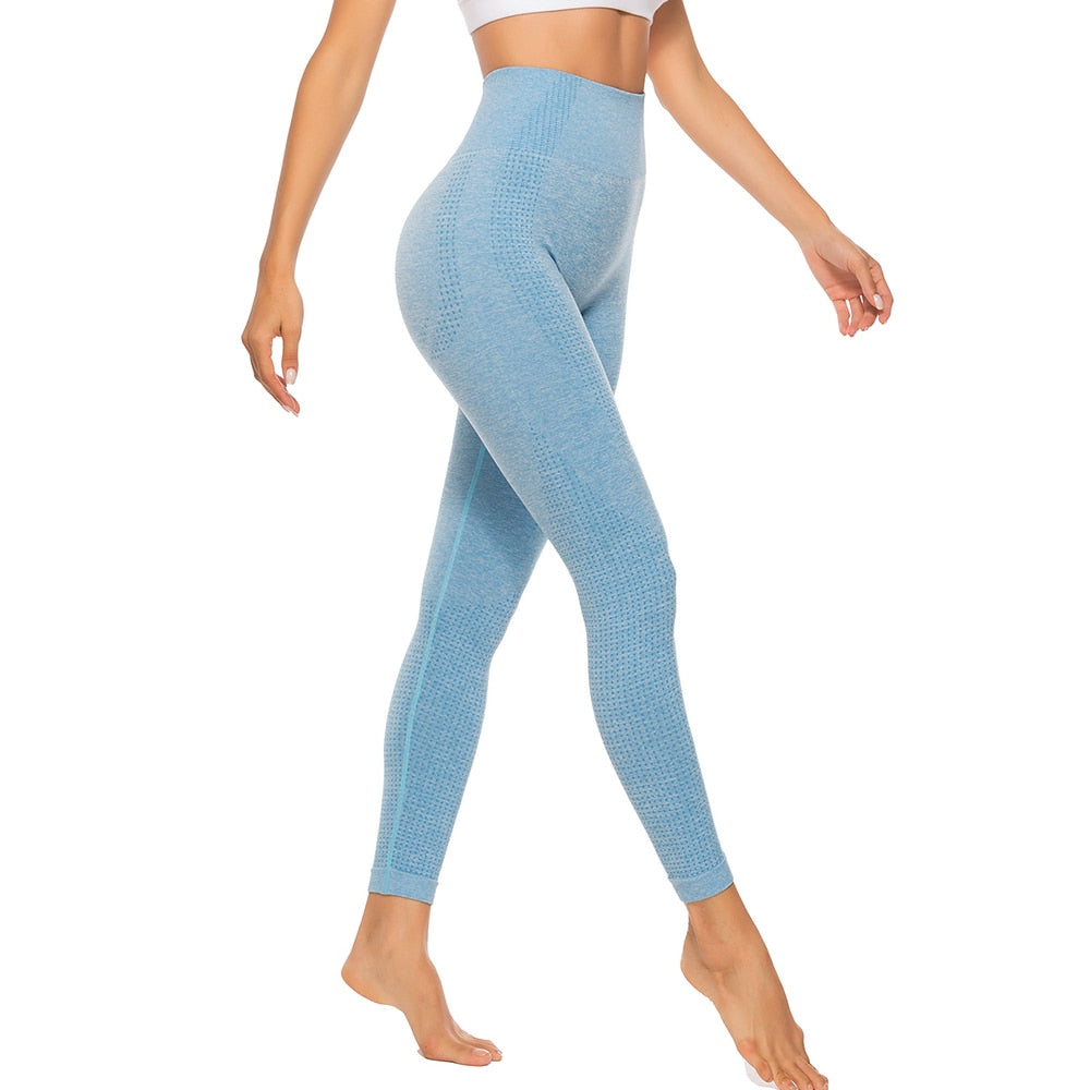 Essential Seamless Contour Leggings - Sky Blue