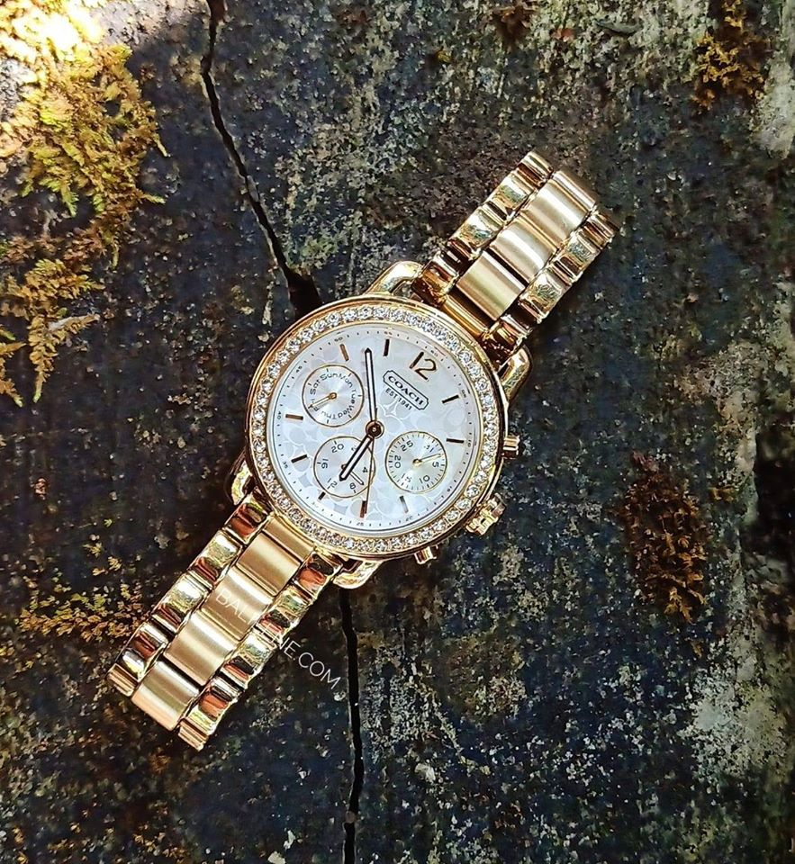 Coach 14501883 Gold Legacy Signature Stainless Chronograph Watch