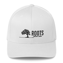 Load image into Gallery viewer, Roots Hat 2