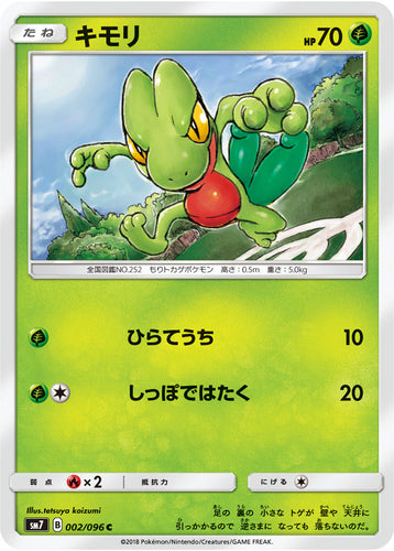 Pokémon card game / PK-SM7-002 C