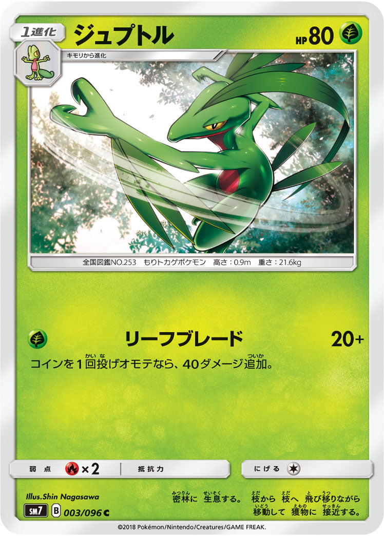 Pokémon card game / PK-SM7-003 C