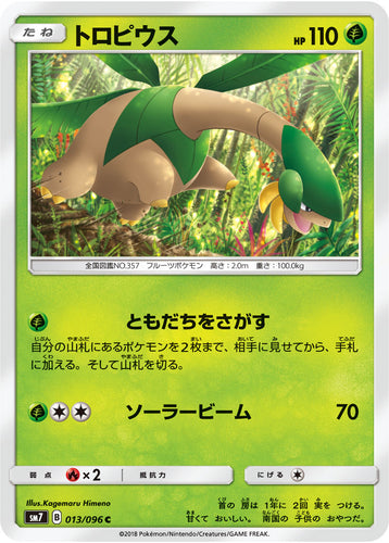 Pokémon card game / PK-SM7-013 C