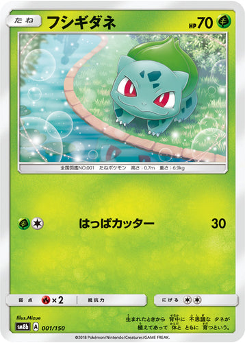 Pokémon card game / PK-SM8b-001/150