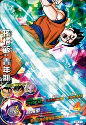 DRAGON BALL HEROES H7-11