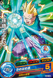 DRAGON BALL HEROES HGD7-49