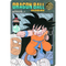 DRAGON BALL Visual Adventure 102