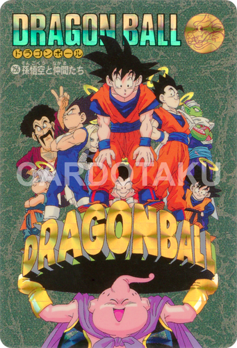 DRAGON BALL Z Visual Adventure 256